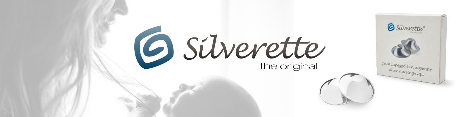 slide_silverette